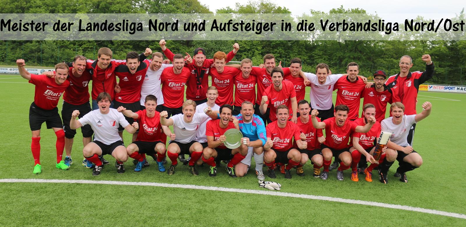 Meister VfL II